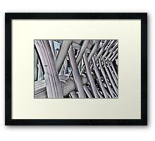 Imprisoned Framed Print