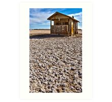 Abandoned shack at The Salton Sea Art Print
