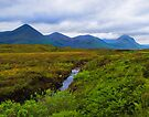 The Black Cuillens by Yukondick