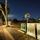 Adelaide Alone by Wayne Grivell
