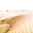 Desert by Olivia McNeilis