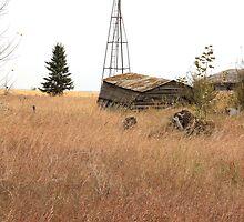 Abandoned Alberta Prairie Windmill by Jim Sauchyn