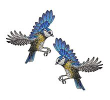 Free Birds, Flying Blue-Tits Illustration Photographic Print