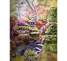 Japanese Tea Garden - San Francisco Photographic Print