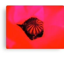 Cut and paste poppy Canvas Print