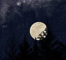 Starry Night by Konoko479