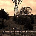 Windmill  by Cheryl Craig