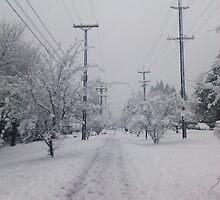 A Grayscale Snowy Day by darkesknight
