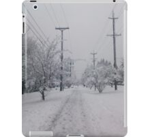 A Grayscale Snowy Day iPad Case/Skin