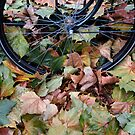 Autumn in Amsterdam by ClaireWroe