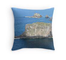 norfolk island scenery 5 Throw Pillow