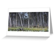New Forest at Woohlpooer   Greeting Card