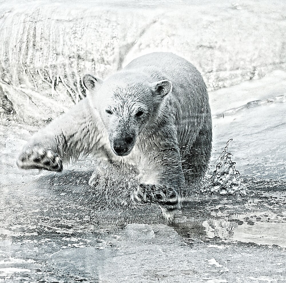 Cooling off by Alan Mattison