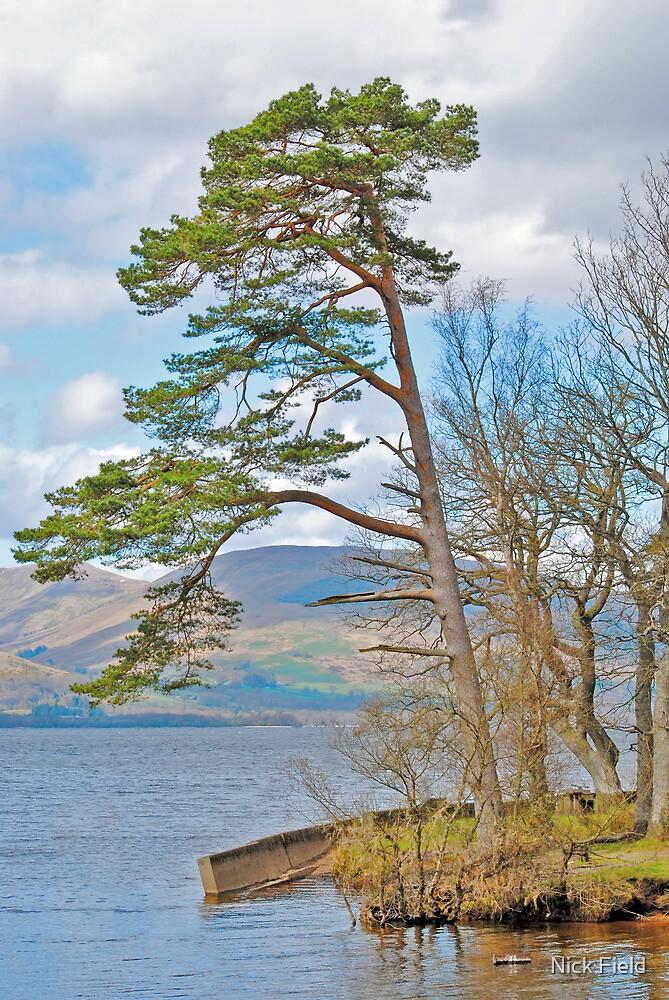 The Bonnie Banks of Loch Lomond by Nick Field