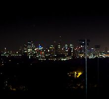The City, from Royal North Shore Hospital by Daniel Rankmore