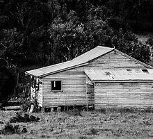Beam Creek house by Ben Osborne