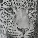 Up Close Leopard by BarbBarcikKeith