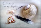 Shells and Feather Thinking of You Card by LouiseK