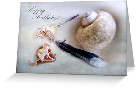 Happy Birthday Shells and Feather Card by LouiseK