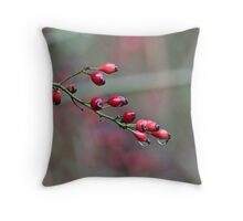 Raindrops on rose hips Throw Pillow