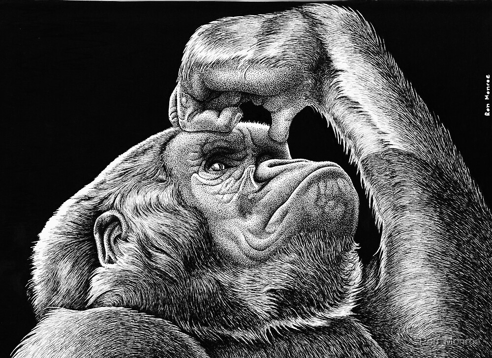 Gorilla Thoughts by Ron  Monroe