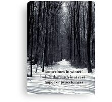 Sometimes in Winter Canvas Print