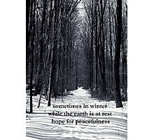 Sometimes in Winter Photographic Print