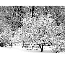 Winter's Bride Photographic Print
