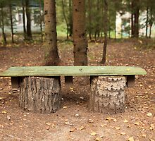 wooden bench by mrivserg