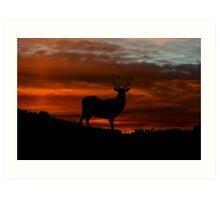 Red Deer Sunset Art Print