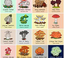 The #FungiFriday Poster! by Cartoon Neuron