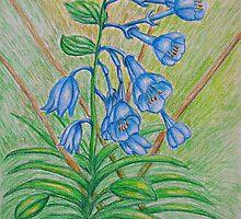 Bluebell by thuraya arts