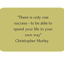 """There is only one success - to be able to spend your life in your own way"" Christopher Morley     by IdeasForArtists"