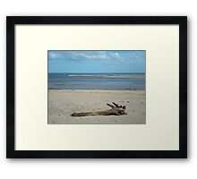 Lonely Beach Framed Print