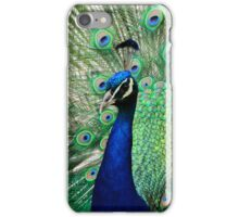 Peacock Display iPhone Case iPhone Case/Skin