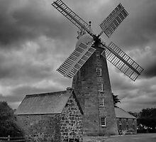Callington Mill, Oatlands by Pauline Tims