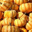 Decorative Pumpkins by Diego Re