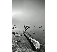 Lomond Driftwood Photographic Print