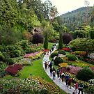 Butchart Gardens by ZWC Photography