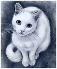 White kitty by jankolas