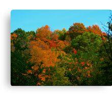 Shades of Fall - Bella! Canvas Print