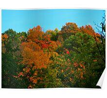Shades of Fall - Bella! Poster