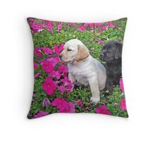 How do we get out of here? Throw Pillow