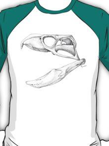 Rhynchosaurs Sure Are Weird - 2 T-Shirt
