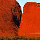 Kata Tjuta by Bill  Robinson