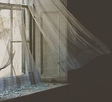 Shattered Dreams by Krista Kruger