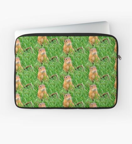 um..can you help me please? Laptop Sleeve