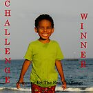 Challenge Winner - Someone By the Sea by quiltmaker