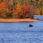 Fall Fishing by Linda  Makiej