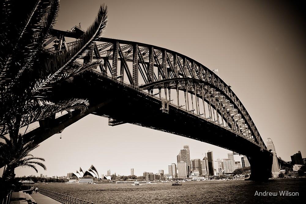 Sydney Australia by Andrew Wilson